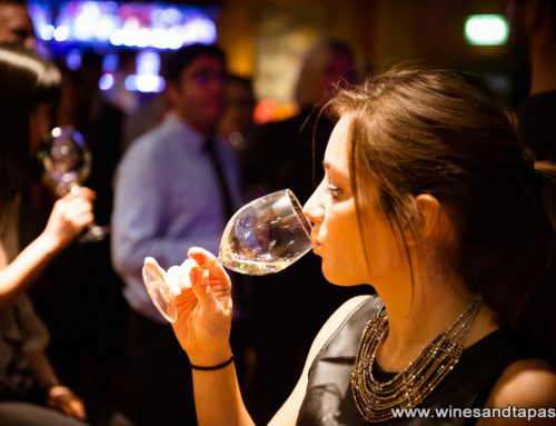 Wine Lovers Apero & Salsa Photos online!